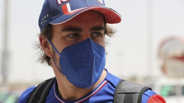 Red Bull Alonso