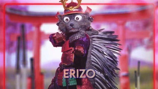 Erizo Mask Singer