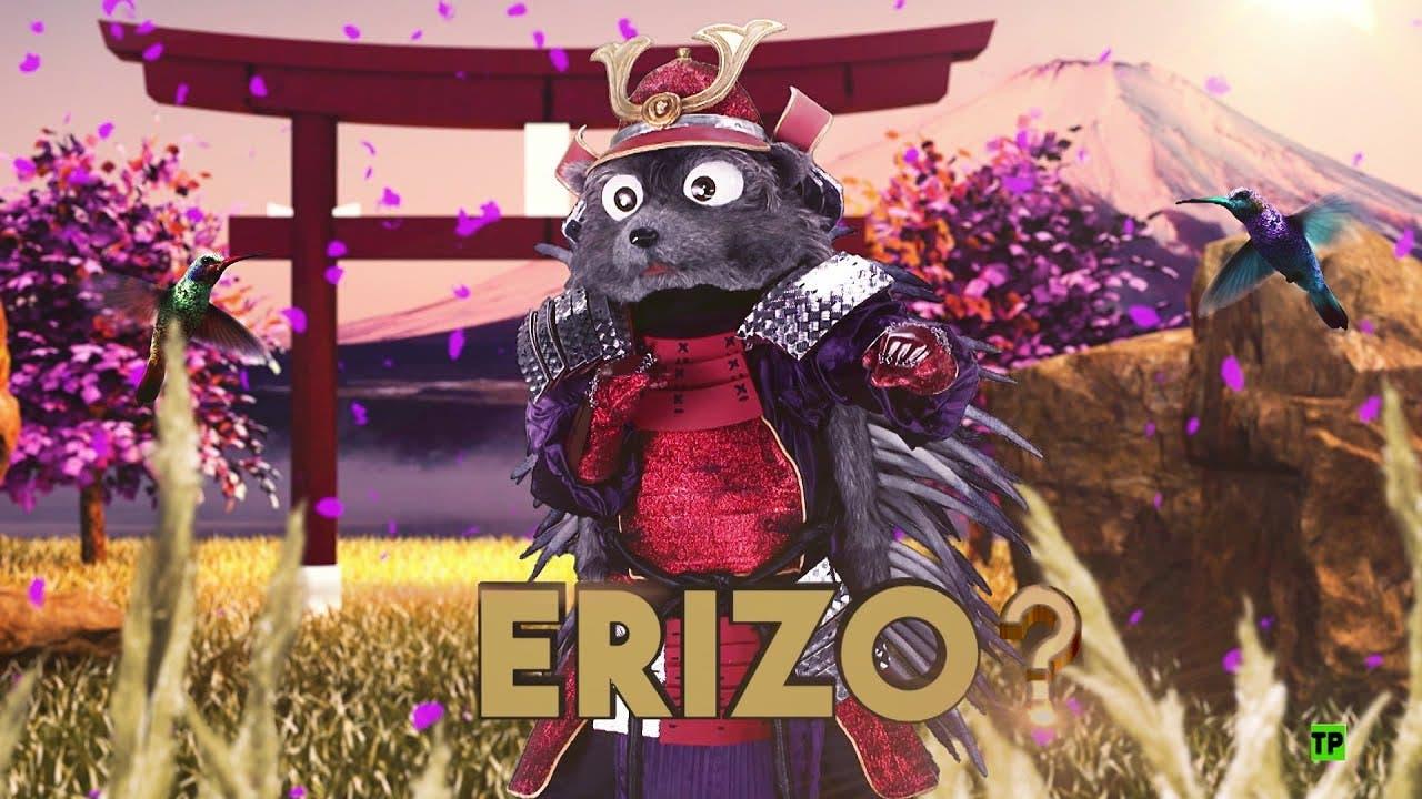 Mask Singer Erizo