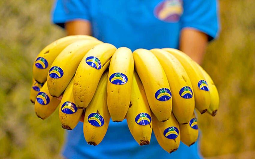 plátano Canarias Día
